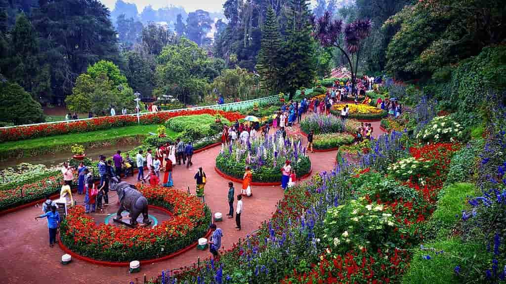 Tourist Places in Ooty in Hindi, Botanical Garden